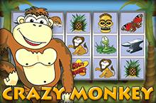 Игра Crazy Monkey